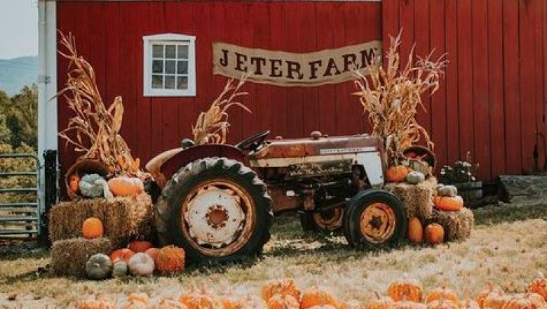 Fall Pumpkin Patch Party – Saturday, October 10th